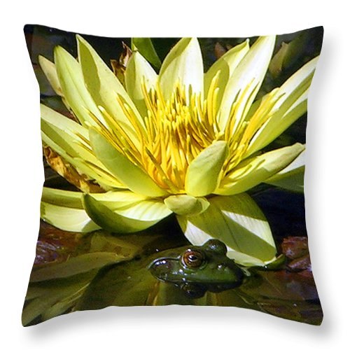 Frog Throw Pillow featuring the photograph Beauty And The Beast by John Lautermilch