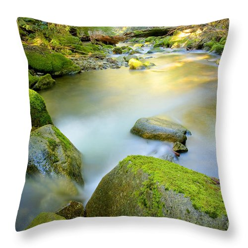 Creek Throw Pillow featuring the photograph Beauty Creek by Idaho Scenic Images Linda Lantzy