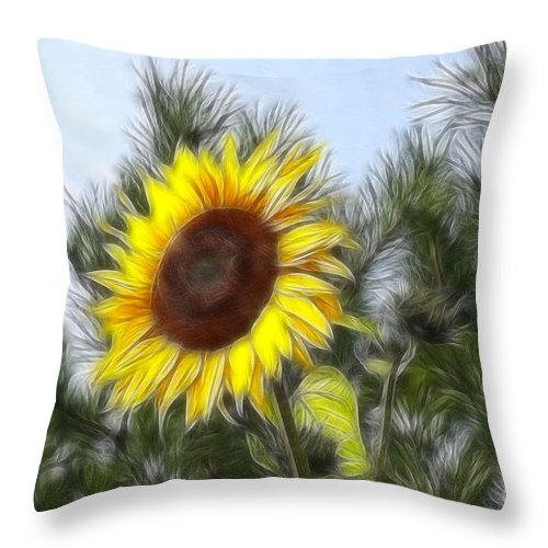 Fratalius Throw Pillow featuring the photograph Beauty In The Pines by Deborah Benoit