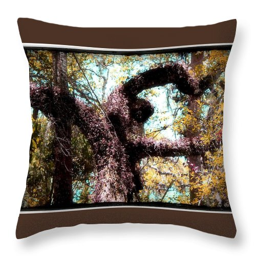 Shannon Throw Pillow featuring the photograph Beauty Of Natures Art by Shannon Sears
