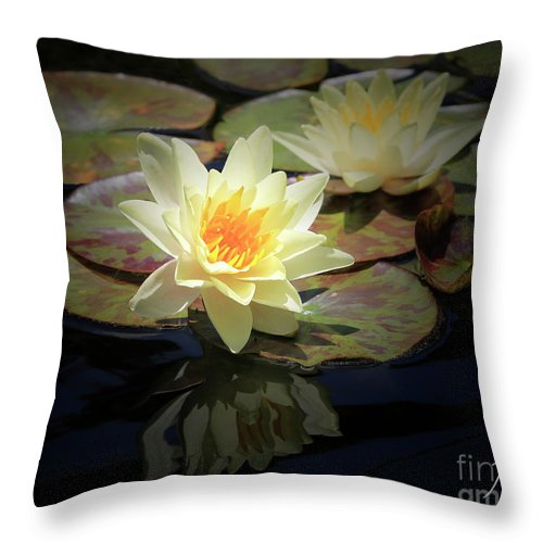 Waterlily Throw Pillow featuring the photograph Beauty Of The Water Lily by Jane Coenen