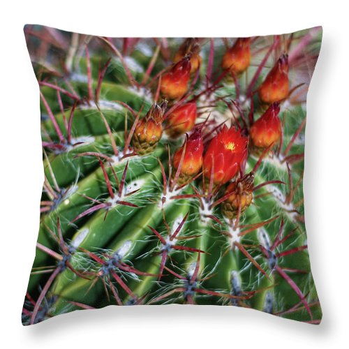 Blooming Throw Pillow featuring the photograph Beauty's Protections by Martina Schneeberg-Chrisien