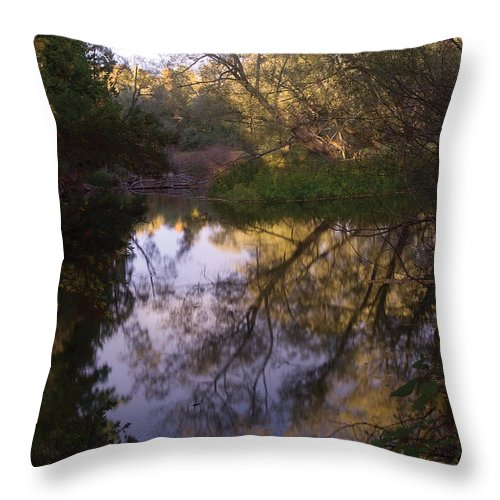 River Throw Pillow featuring the photograph Beaver River Calm Reflection by Steve Somerville