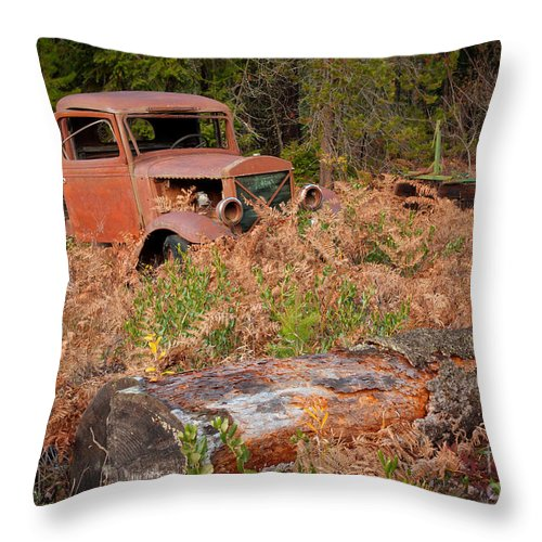 Truck Throw Pillow featuring the photograph Bed Of Ferns by Idaho Scenic Images Linda Lantzy