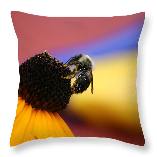 Insects Throw Pillow featuring the photograph Bee All You Can Bee by Linda Sannuti