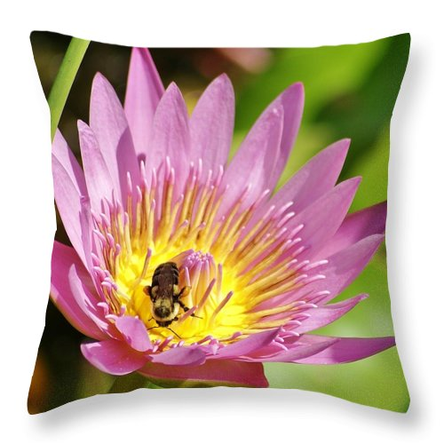 Bee Throw Pillow featuring the photograph Bee And The Lily by Patricia Twardzik