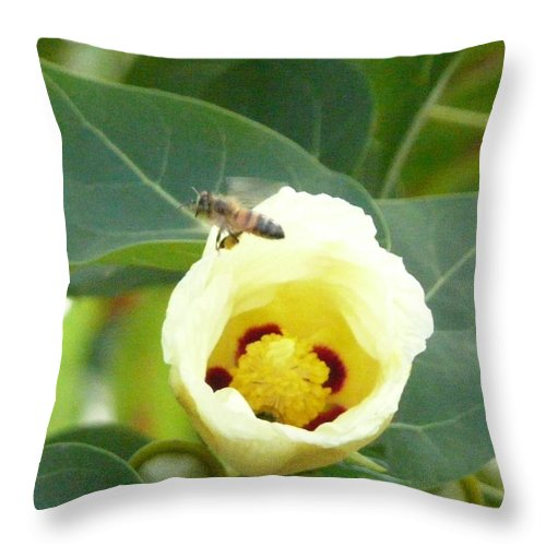 Bee Plants Tropical Throw Pillow featuring the photograph Bee Chowtime by Robert aka Bobby Ray Howle