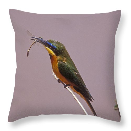 African Birds Throw Pillow featuring the photograph Bee Eater And Dragonfly by Sandra Bronstein