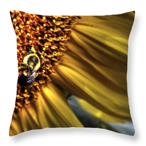 Sunflower Throw Pillow featuring the photograph Bee Happy by Guy Harnett