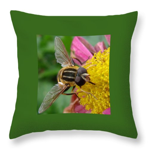 Bees Throw Pillow featuring the photograph Bee by Mary Halpin
