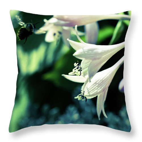 Photograph Throw Pillow featuring the photograph Bees Love Hastas by Susan Schumann