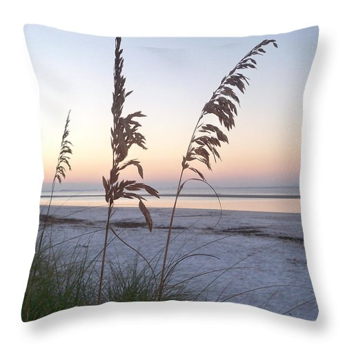 Florida Throw Pillow featuring the photograph Before Day by Chris Andruskiewicz