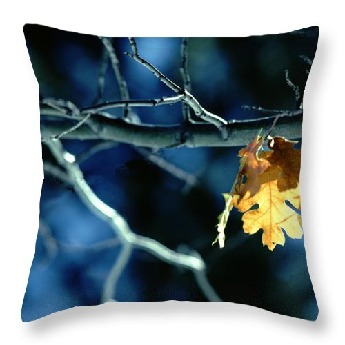 Photography Throw Pillow featuring the photograph Before The Fall by Paul Wear