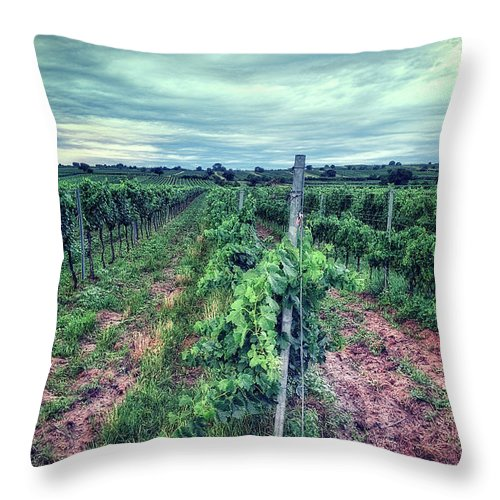 Wine Throw Pillow featuring the photograph Before The Harvesting by Radek Spanninger