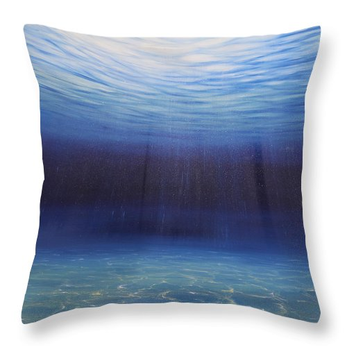 Ocean Art Throw Pillow featuring the painting Beginnings by Eva Volf