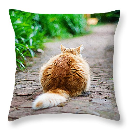 Cat Art Throw Pillow featuring the painting Behind The Cat by Queso Espinosa