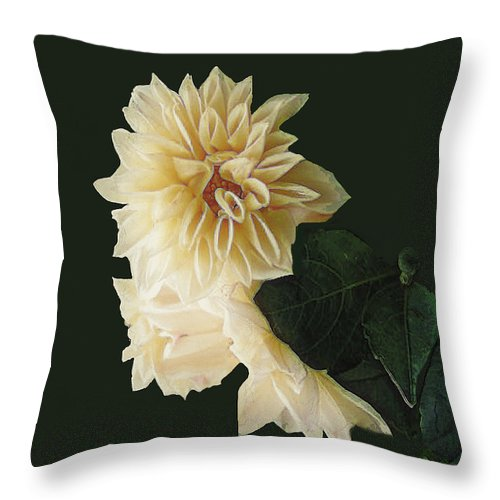 Beige Throw Pillow featuring the digital art Beige Bold And Beautiful by RC DeWinter