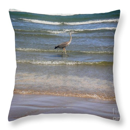 Nature Throw Pillow featuring the photograph Being One With The Gulf - Alert by Lucyna A M Green
