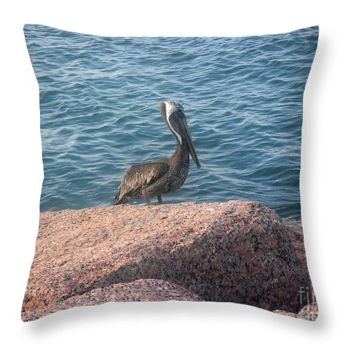 Nature Throw Pillow featuring the photograph Being One With The Gulf - Anticipating by Lucyna A M Green
