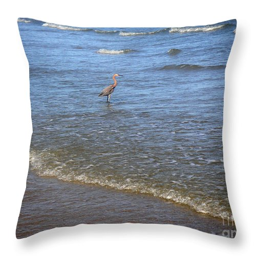 Nature Throw Pillow featuring the photograph Being One With The Gulf - Detached by Lucyna A M Green