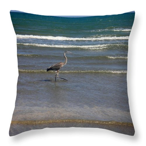Nature Throw Pillow featuring the photograph Being One With The Gulf - In Step by Lucyna A M Green