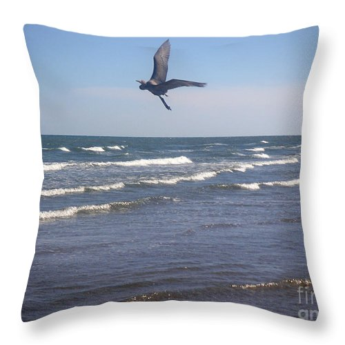 Nature Throw Pillow featuring the photograph Being One With The Gulf - On Wings by Lucyna A M Green