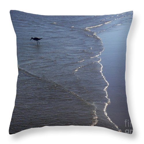 Nature Throw Pillow featuring the photograph Being One With The Gulf - Pinpointing by Lucyna A M Green
