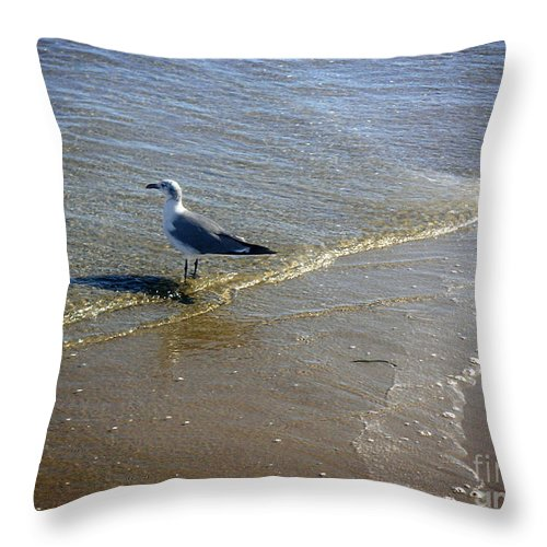 Nature Throw Pillow featuring the photograph Being One With The Gulf - Reflecting by Lucyna A M Green
