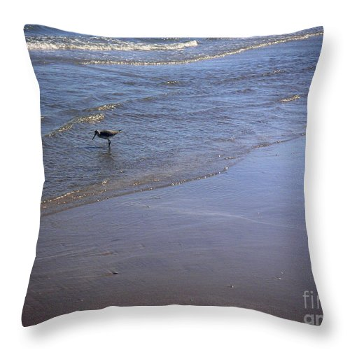 Nature Throw Pillow featuring the photograph Being One With The Gulf - Spotting by Lucyna A M Green
