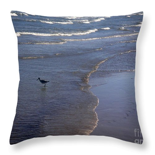 Nature Throw Pillow featuring the photograph Being One With The Gulf - Vigilant by Lucyna A M Green