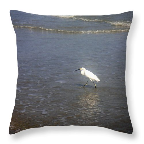 Nature Throw Pillow featuring the photograph Being One With The Gulf - Wary by Lucyna A M Green