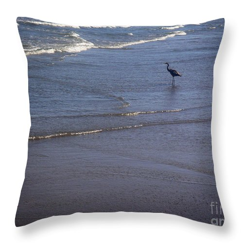 Nature Throw Pillow featuring the photograph Being One With The Gulf - Watching by Lucyna A M Green