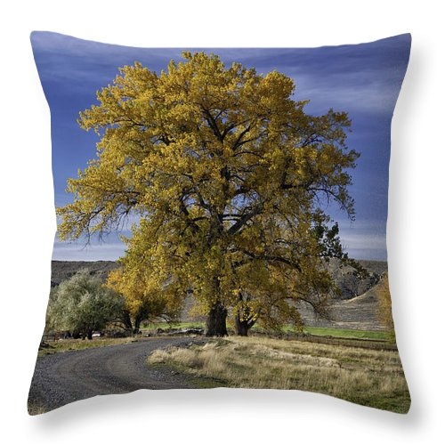 Beautiful Photos Throw Pillow featuring the photograph Belfry Fall Landscape 5 by Roger Snyder