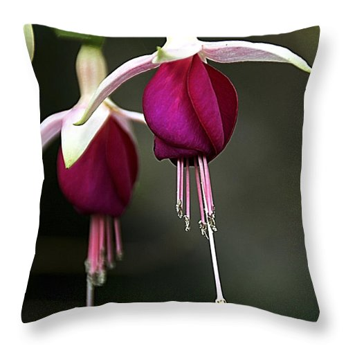 Flower Throw Pillow featuring the photograph Bell Flower by Vladi Alon