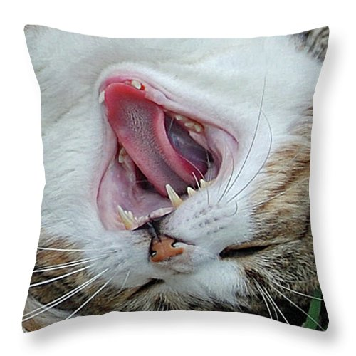 Cat Throw Pillow featuring the digital art Belly Laugh by DigiArt Diaries by Vicky B Fuller