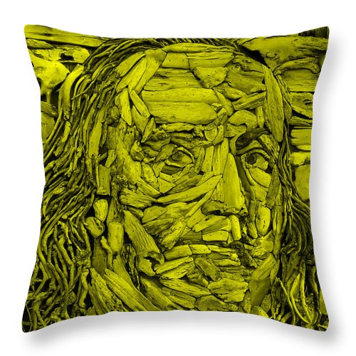 Ben Franklin Throw Pillow featuring the photograph Ben In Wood Yellow by Rob Hans