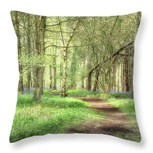 Nature Throw Pillow featuring the photograph Bentley Woods, Warwickshire #landscape by John Edwards