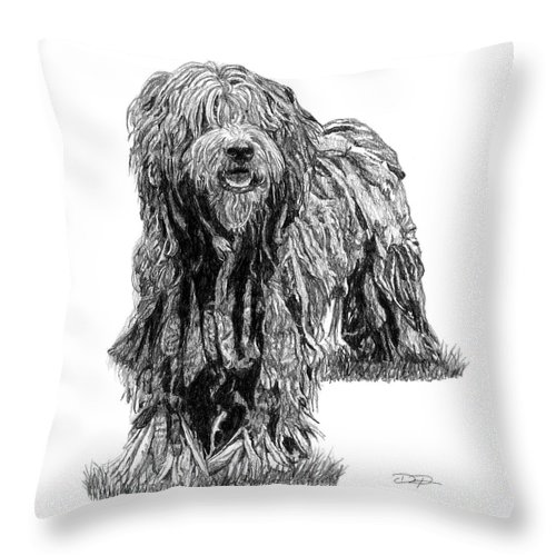 Bergamasco Sheepdog Throw Pillow featuring the drawing Bergamasco Sheepdog by Dan Pearce