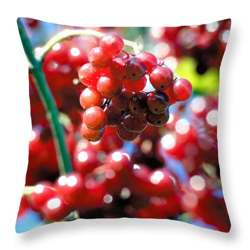 Red Throw Pillow featuring the photograph Berry Berry Red-1 by Steve Somerville