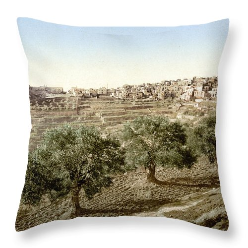 Bethlehem Throw Pillow featuring the photograph Bethlehem Field 1890 by Munir Alawi