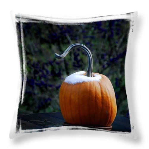 Winter Throw Pillow featuring the photograph Betsy's Pumpkin by James Zuffoletto