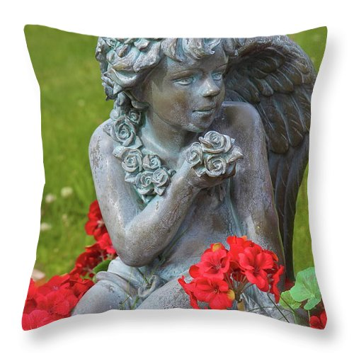 Throw Pillow featuring the photograph Beyond by Rick Monyahan