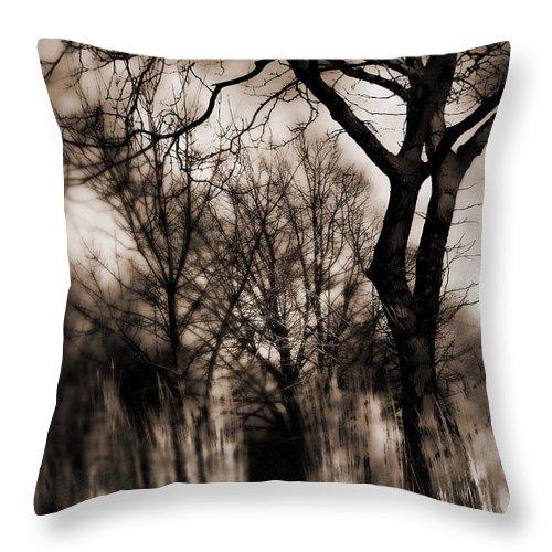Tree Throw Pillow featuring the photograph Beyond Twilight by Lauren Radke