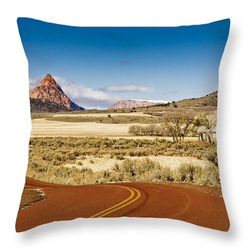 Landscape Throw Pillow featuring the photograph Beyond Zion by Ches Black
