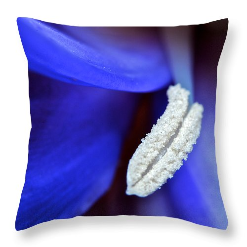 Flower Throw Pillow featuring the photograph Big Blue by Donna Shahan