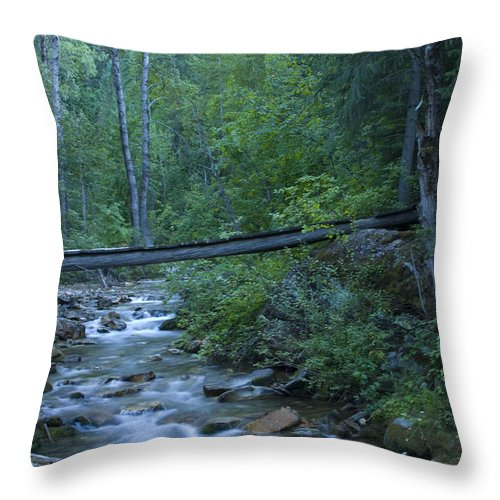 Creek Throw Pillow featuring the photograph Big Creek Bridge by Idaho Scenic Images Linda Lantzy