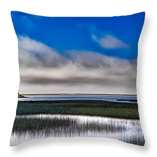 California Throw Pillow featuring the photograph Big Lagoon Park California by Mountain Dreams