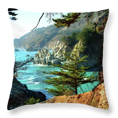 Nature Throw Pillow featuring the photograph Big Sur Vista by Charlene Mitchell