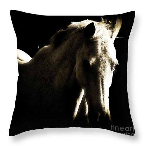 Horse Throw Pillow featuring the photograph Bijou by Clare Bevan