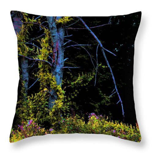 Birch Trees In Summer Throw Pillow featuring the photograph Birch And Vines by Joanne Smoley